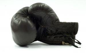 Stock-boxingglove
